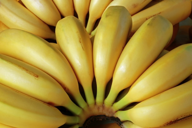 Close-up of ripe bananas in street market stall Premium Photo