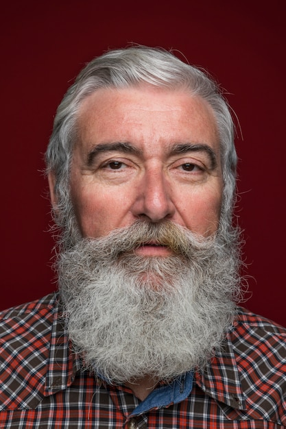 Close-up of senior man with grey beard on colored backdrop Free Photo