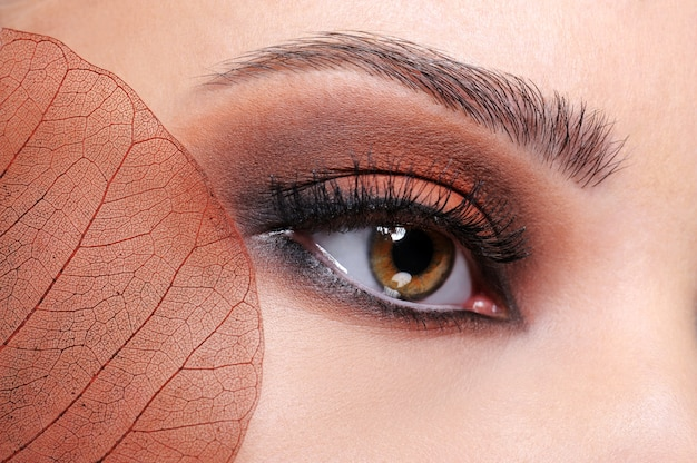 Close-up shoot of female eye with brown bright make-up and leaf Free Photo
