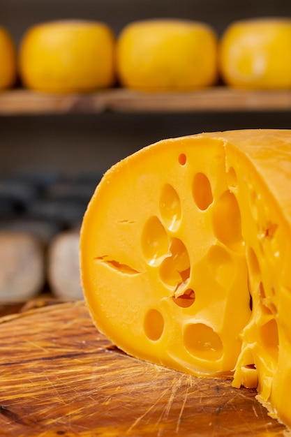 Close-up slice of tasty swiss cheese Free Photo