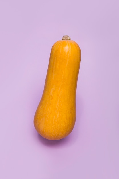 Close-up of a squash on purple surface Free Photo