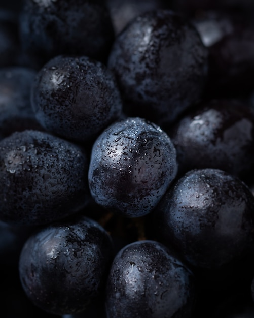 Close-up on tasty blueberry, natural fresh Free Photo