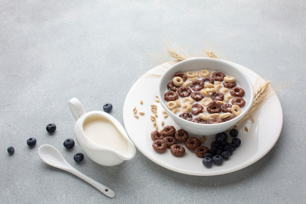 Close-up tasty cereal bowl with milk Free Photo