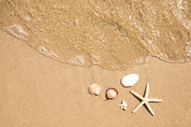 Close-up top view of water on tropical sandy beach Free Photo