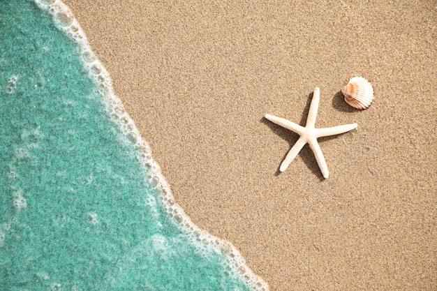 Close-up top view of water on tropical sandy beach Premium Photo