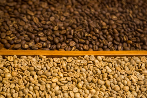 Close-up two types of coffee beans background Free Photo