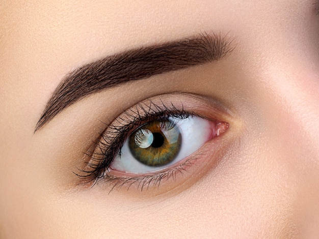 Close up view of beautiful brown female eye. perfect trendy eyebrow. good vision, contact lenses, brow bar or fashion eyebrow makeup concept Premium Photo