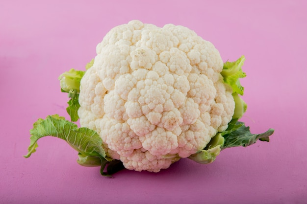 Close-up view of cauliflower on purple background with copy space Free Photo