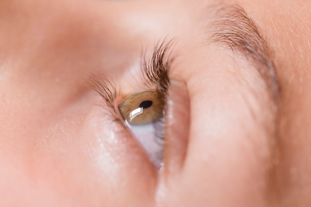 Close up view of a girl green eye. macro photography Premium Photo