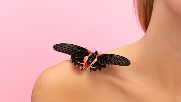 Крупным планом вид бабочки на плече Бесплатные Фотографии