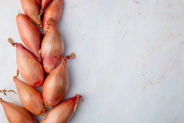 Close-up view of shallots on white background with copy space Free Photo