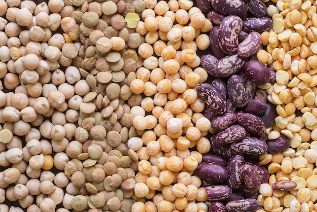 Close-up view of various beans arrangement Free Photo