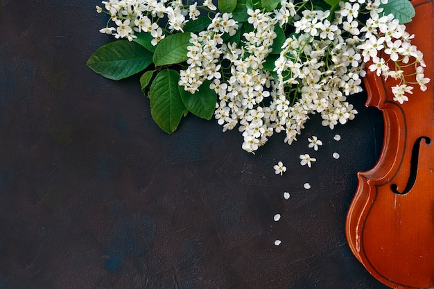 Close-up of violin with beautiful flowering tree branches on black background. Premium Photo