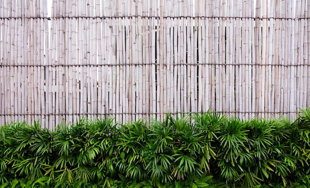 Close up of wall made of vintage bamboo fence Premium Photo