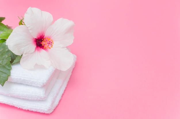 Close-up of white hibiscus flower and towels on pink backdrop Free Photo