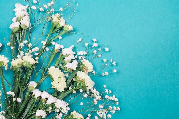 Close-up of white limonium and gypsophila flowers on blue background Free Photo