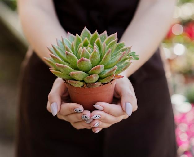 Close-up woman holding small plant pot Free Photo