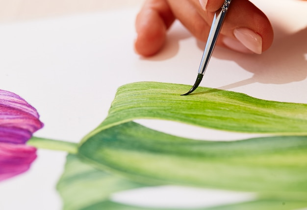 Close up, woman is drawing a tulip Free Photo