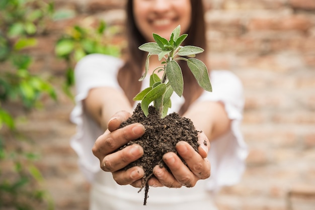 Close-up of a woman's hand holding seedling Free Photo