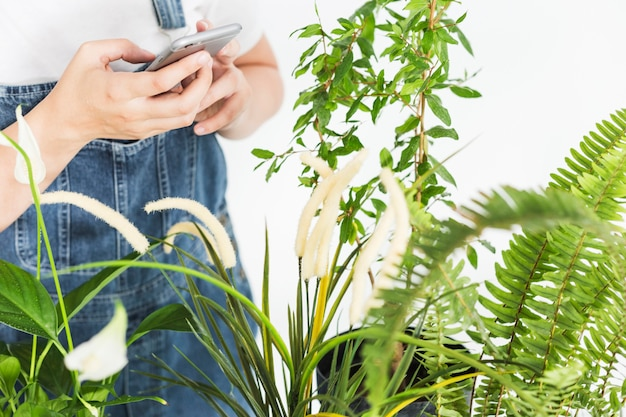 Close-up of a woman's hand holding smartphone near plants Free Photo