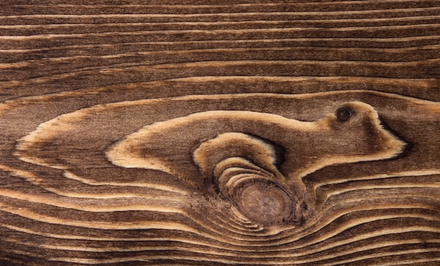 Close-up of wooden texture with circles and lines Free Photo