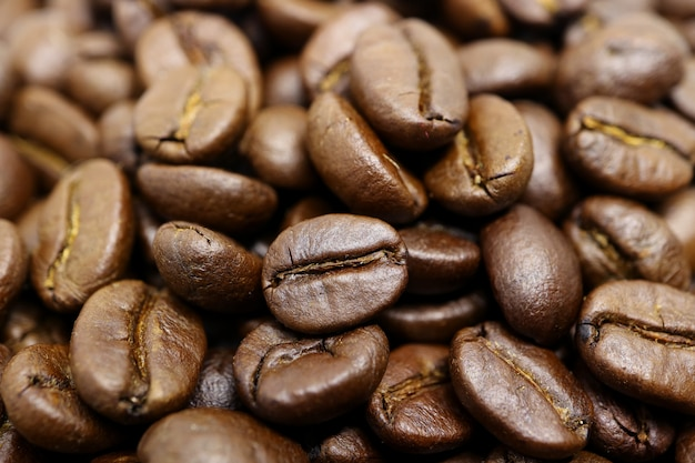 Closed up heap of roasted coffee beans with selective focus and blurred background Premium Photo