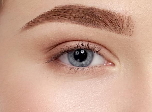 Closeup of beautiful female blue eyes with long eyelashes Premium Photo