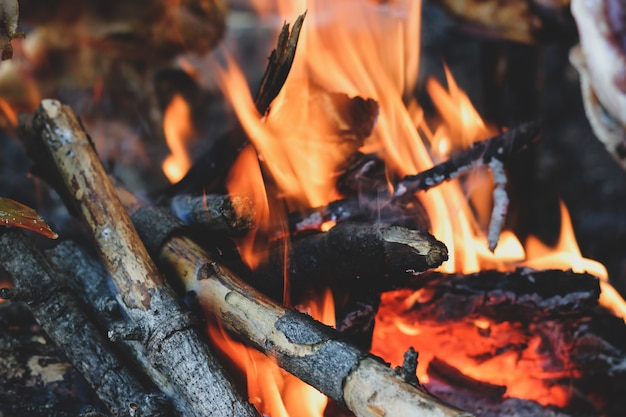 Closeup of bright fireplace with logs and branches Premium Photo