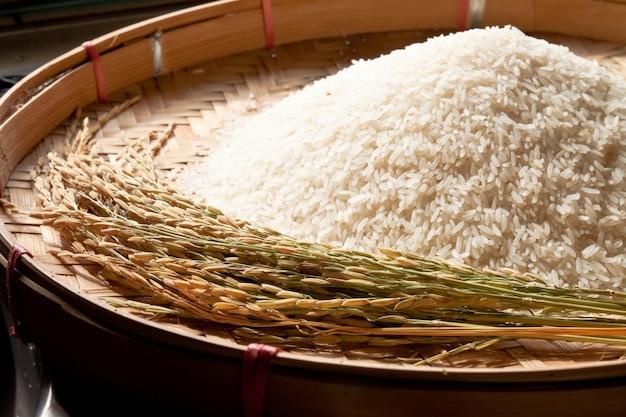 Closeup food staple white wooden Free Photo