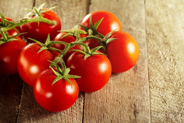 Closeup of fresh tasty red tomatoes. sunny daylight. healthy food or italian food concept. Free Photo