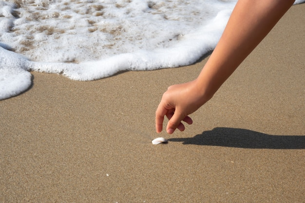 Closeup girl hand picking shell on beach with wave bubble. Premium Photo