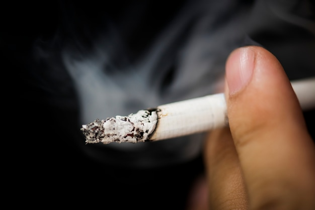 Closeup of hand holding cigarr Free Photo