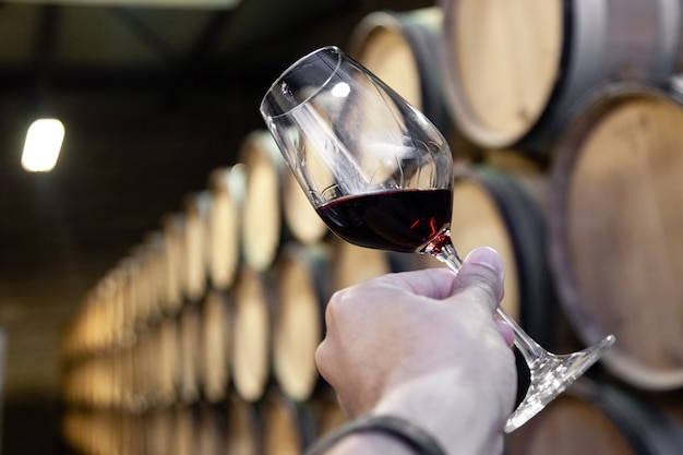 Closeup hand with glass of red wine on background wooden oak barrels stacked in straight rows in order, old cellar of winery. Premium Photo