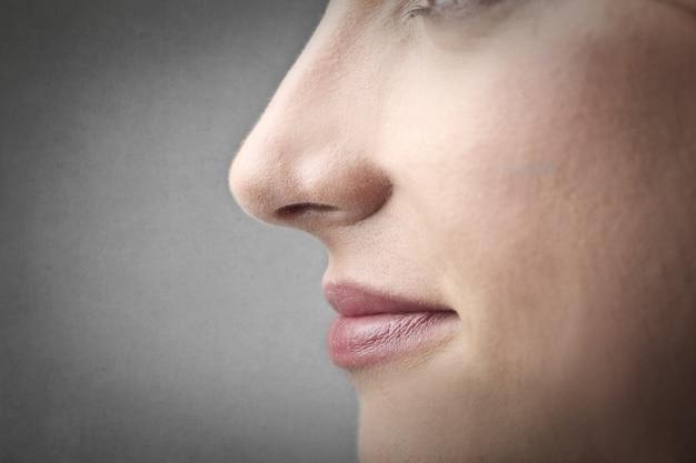 Closeup image of a woman nose Premium Photo