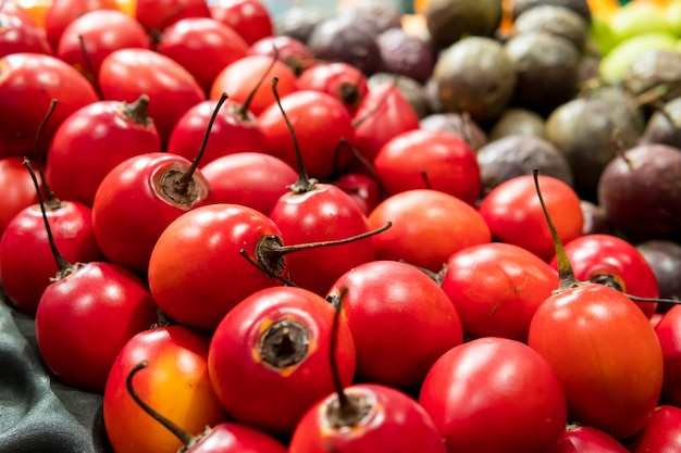 Closeup of a kind of uncommon fruit red tamarillo. tree tomato. Premium Photo