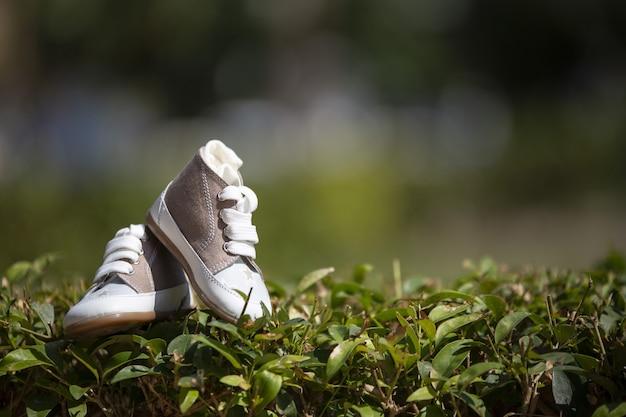 ぼやけた背景と日光の下で芝生の上のベビースニーカーのクローズアップ 無料写真