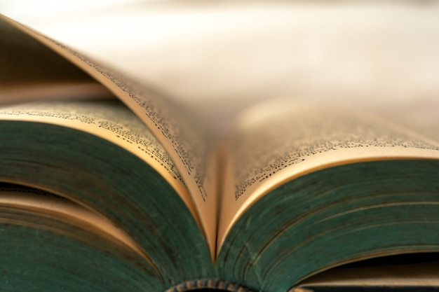 Closeup of old books that are currently open. Premium Photo