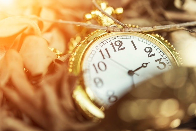 Closeup of an old clock on dry leaves on ground with sun light. Premium Photo