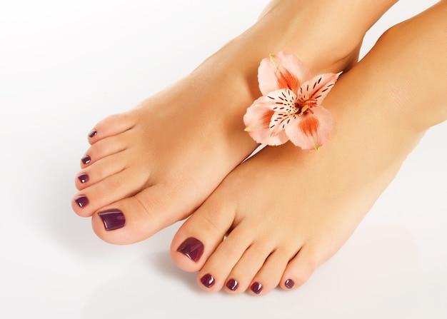 Pics female feet Feet on