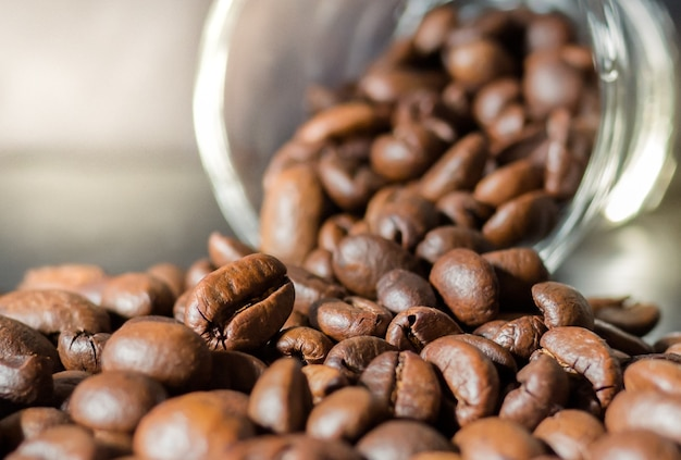 Closeup picture, coffee beans with glass bottle and sunlight Premium Photo