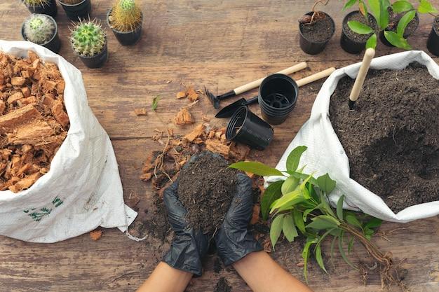 Maschera del primo piano delle mani del giardiniere che pianta pianta Foto Gratuite