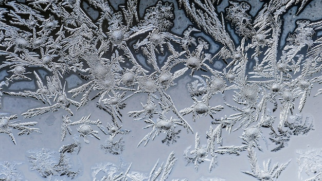 Closeup shot of beautiful frost patterns and textures on a glass Free Photo