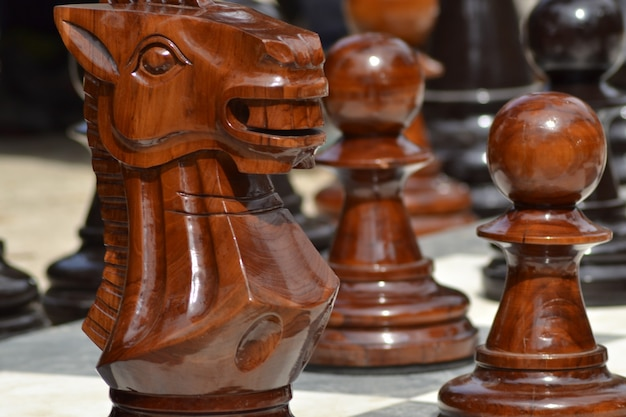 Closeup shot of big wooden outdoor chess figures with a blurred background Free Photo