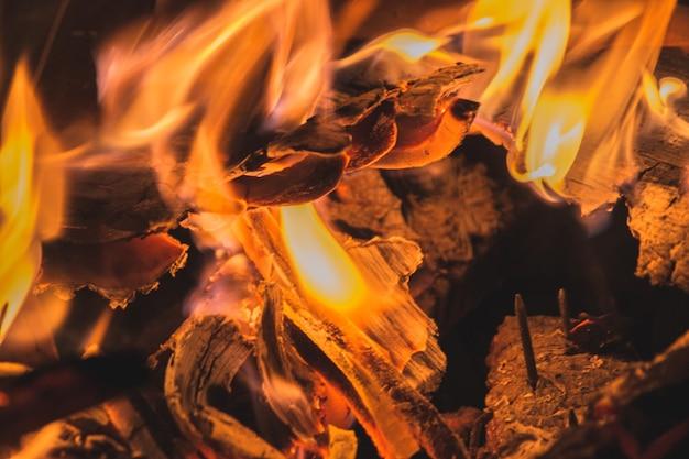 Крупным планом выстрелил горящее дерево и красивые цвета огня Бесплатные Фотографии