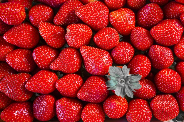 Closeup shot of delicious fresh red strawberries Free Photo