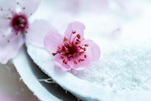 白樺の砂糖でいっぱいの白いプレート上の美しいピンクの花のクローズアップショット 無料写真