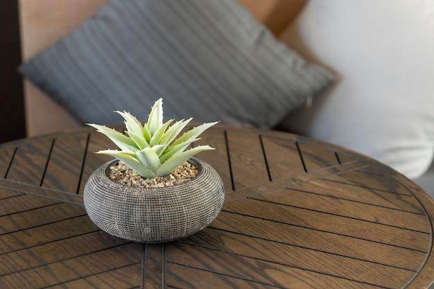 枕と木製のテーブルの上にサボテンのクローズアップショット 無料写真