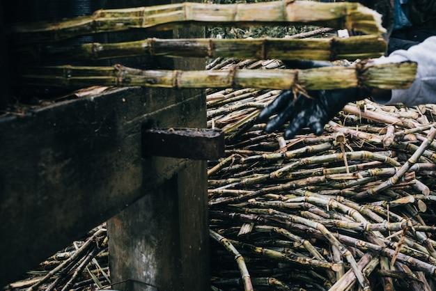 Съемка крупного плана стога высушенных сахарных тростников в аграрном поле Бесплатные Фотографии