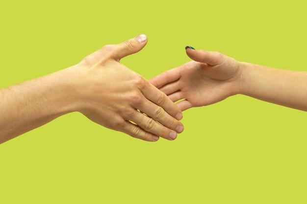 孤立した手を握って人間のクローズアップショット。人間関係、友情、パートナーシップの概念 無料写真