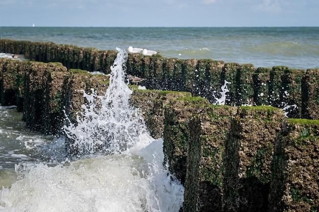 Крупным планом скалы с мхом на вершине в волнистом море Бесплатные Фотографии